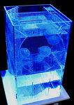 アクリルミニオーバーフロー水槽 【変えれま水位】にキューブタイプクラゲプラス